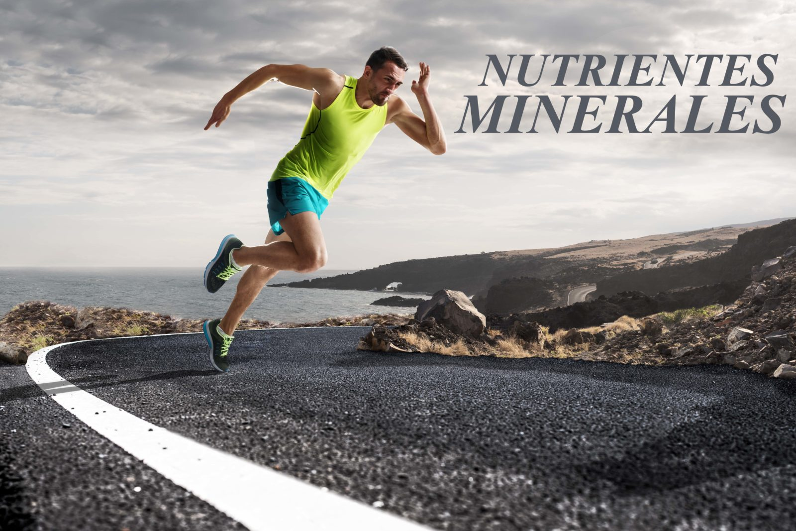 Nutrientes Minerales